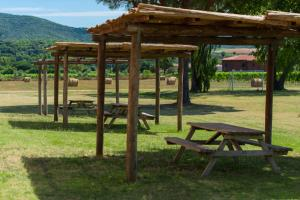 Tenuta Agricola dell'Uccellina, Farm stays  Fonteblanda - big - 139