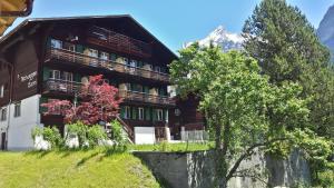 Tschuggen Apartment - No Kitchen, Appartamenti  Grindelwald - big - 18
