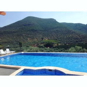 Natureland Efes Pension, Residence  Selcuk - big - 57