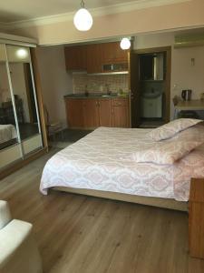 Natureland Efes Pension, Residence  Selcuk - big - 71