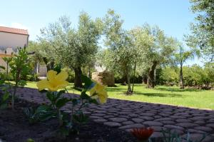 Villa D'Aquino, Bed & Breakfasts  Tropea - big - 62