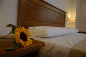 Villa D'Aquino, Bed & Breakfasts  Tropea - big - 15