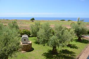 Villa D'Aquino, Bed & Breakfasts  Tropea - big - 68