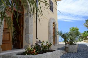 Villa D'Aquino, Bed & Breakfasts  Tropea - big - 56