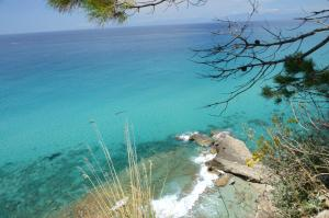 Villa D'Aquino, Bed & Breakfasts  Tropea - big - 37