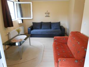 Apartment Mladenovic, Apartmány  Zlatibor - big - 19