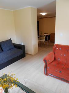 Apartment Mladenovic, Apartmány  Zlatibor - big - 15