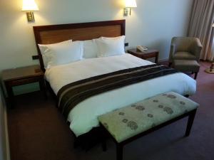 Hotel Puerta del Sur, Hotels  Valdivia - big - 6