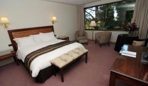 Hotel Puerta del Sur, Hotels  Valdivia - big - 9