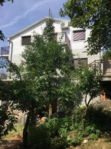 Apartment Filipovic