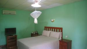 Gloria's Bed and Breakfast, Bed & Breakfast  Livingstone - big - 21
