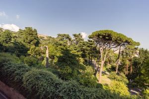 Appartamento Vista Sul Parco - AbcAlberghi.com