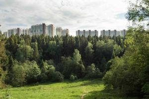 Izumrudnye Holmy 1, Apartmanok  Krasznogorszk - big - 25