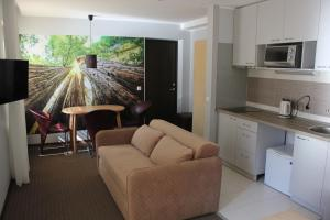 Broliu Vila, Hotels  Druskininkai - big - 5