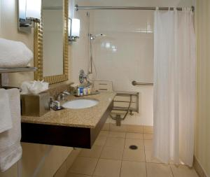 King Room - Mobility Access with Roll-In Shower