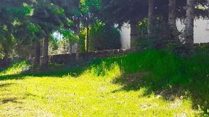 Villa Panoramica Belvedere, Apartmány  Scontrone - big - 22
