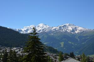 One-Bedroom Apartment Tayannes 223, Apartmány  Verbier - big - 3