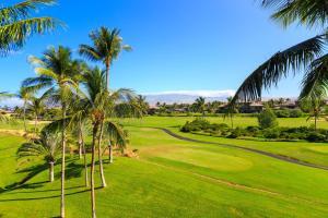 Hilton Waikoloa Village (14 of 66)