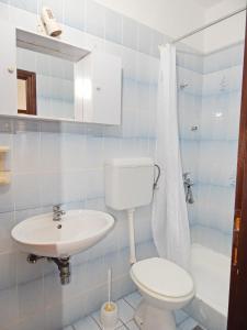 Apartments Fumić, Ferienwohnungen  Mandre - big - 36