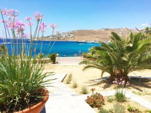 Only yours , Mykonos, Apartments  Paraga - big - 43
