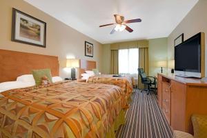 豪华大号床一室公寓 - 带两张大号床 - 禁烟
