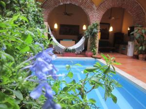 Casa India Catalina, Hotely  Cartagena de Indias - big - 69
