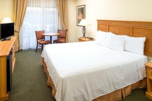 Days Inn & Suites by Wyndham Scottsdale North, Hotels  Scottsdale - big - 16