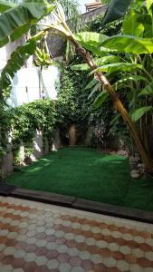 La Casa Delle Vacanze Acitrezza, Appartamenti  Aci Castello - big - 3