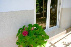 Guesthouse Villa Juric, Guest houses  Crikvenica - big - 43