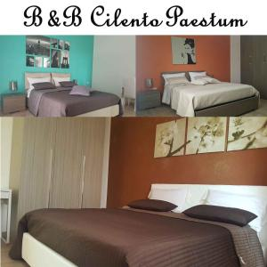 B&b Cilento Paestum - AbcAlberghi.com