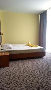 Balaton Hotel, Szállodák  Napospart - big - 25