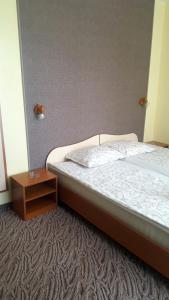 Balaton Hotel, Szállodák  Napospart - big - 23