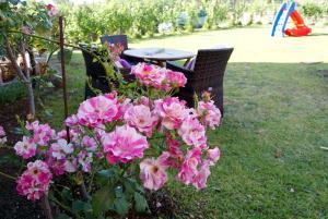 Villa Levanda, Prázdninové domy  Lefkada Town - big - 17