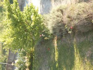 Villa Levanda, Prázdninové domy  Lefkada Town - big - 15