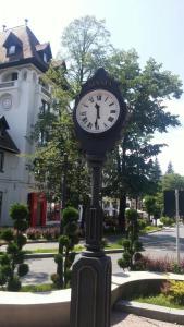Vila Felix, Affittacamere  Sinaia - big - 50