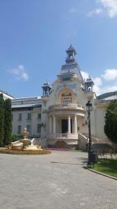 Vila Felix, Affittacamere  Sinaia - big - 49