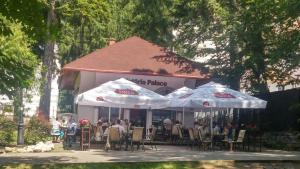 Vila Felix, Affittacamere  Sinaia - big - 41