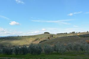 Agriturismo Torraiolo, Apartmanhotelek  Barberino di Val d'Elsa - big - 39