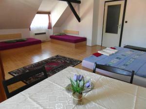 Pension U Soudu, Guest houses  Český Krumlov - big - 14