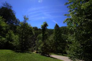 Mountain Cove, Holiday homes  Gatlinburg - big - 19