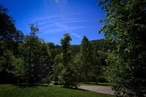 Mountain Cove, Holiday homes  Gatlinburg - big - 56