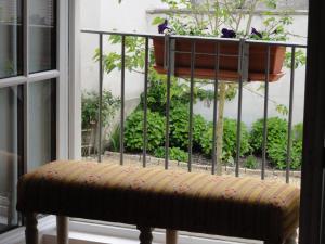 Le Figuier, Bed & Breakfasts  Sainte-Maure-de-Touraine - big - 10