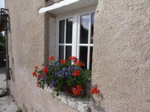 Le Figuier, Bed & Breakfasts  Sainte-Maure-de-Touraine - big - 9