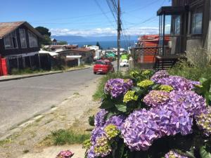 Hostal Mirando al Mar, Guest houses  Puerto Montt - big - 13