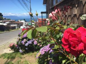 Hostal Mirando al Mar, Guest houses  Puerto Montt - big - 15