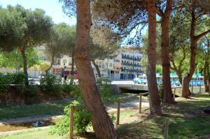 Apartments Soleil Tossa 4, Apartments  Tossa de Mar - big - 25