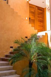 Punta arena Surf, Ferienwohnungen  Puerto Escondido - big - 17