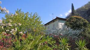 La Casa Di Bice - AbcAlberghi.com