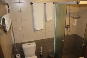 Broliu Vila, Hotels  Druskininkai - big - 18