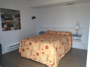 Motel L'Avantage, Мотели  Roberval - big - 29